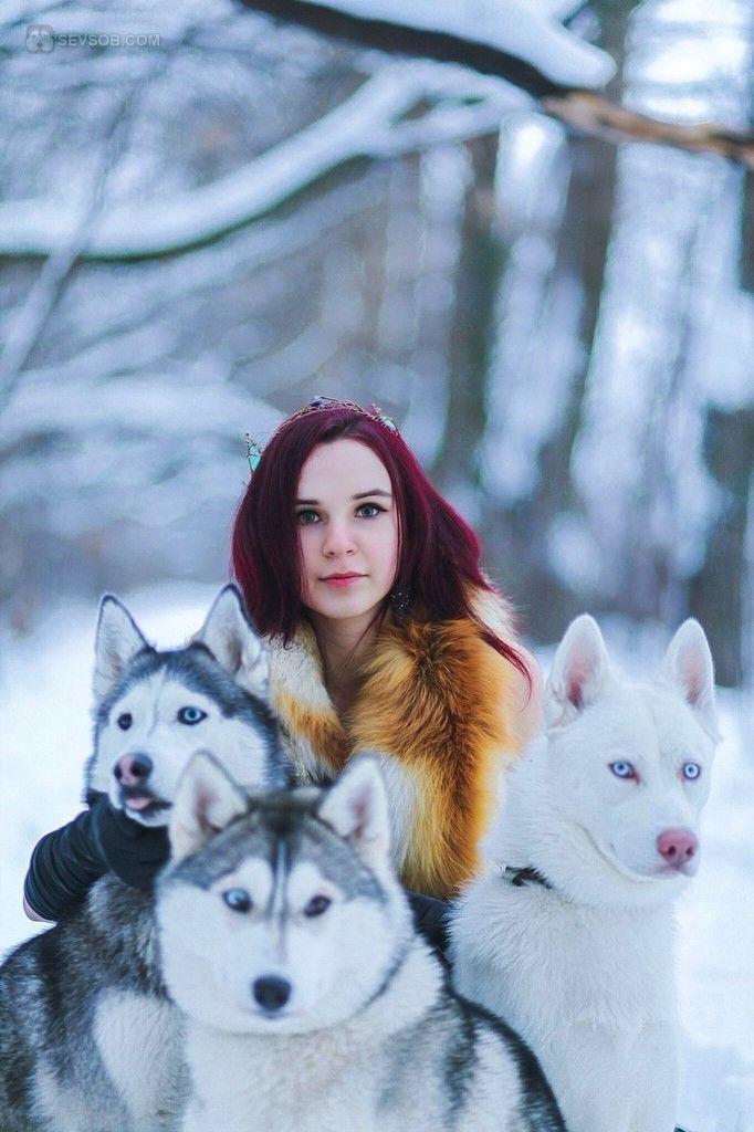 Красноволосая красавица и ее сибирские хаски   Фото хаски и маламуты