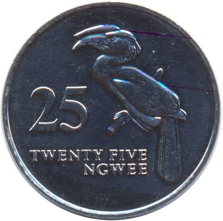 25 Ngwee #Zambia -1992 Ritrae il Bucero Incoronato, l'uccello dal becco rosso ricurvao in basso.