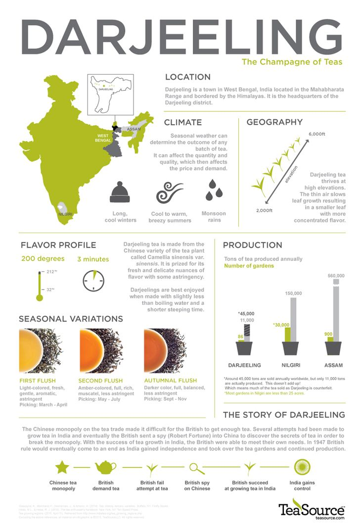 Fascinating world of Darjeeling tea.