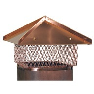 Flues repaired & fitted in London by chimneysweepslondon.com: Chimney Cap, Flue Liner, Fireplacem Chimneycap, Head Of Garlic, London Chimney, Chimneysweepslondon Com, Flue Cap, Flue Repair, Copper Flue