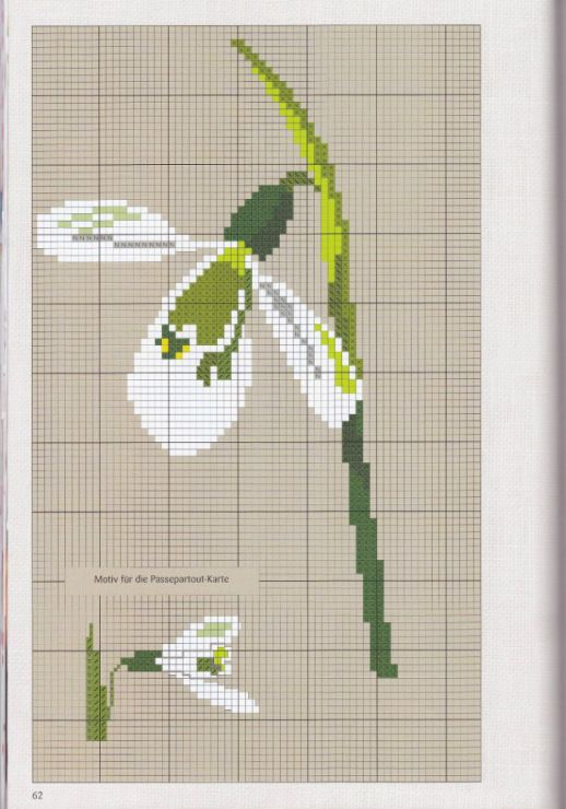 Flowers and plenty of designs in Cross Stitch !  Gallery.ru / Фото #87 - Вышивка 71 - kuritsa-kusturitsa