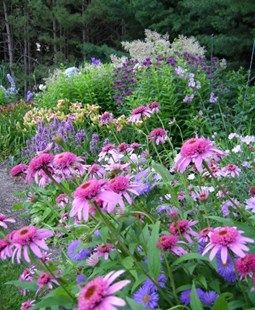 Lovely Ideas For Incorporating Perennials Into The Your Landscape