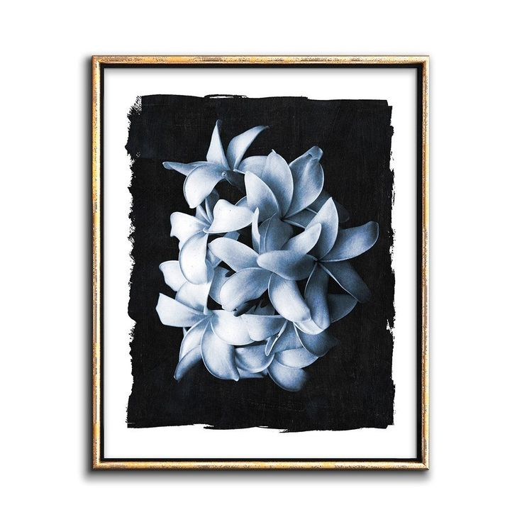 Modern cyanotype printable art white flowers botanical wall decor