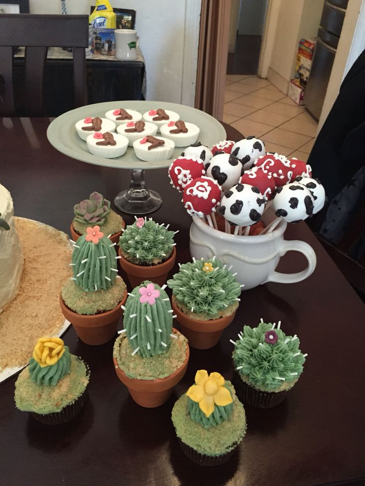 Wild West Party Desserts Succulents Cupcakes Cactus