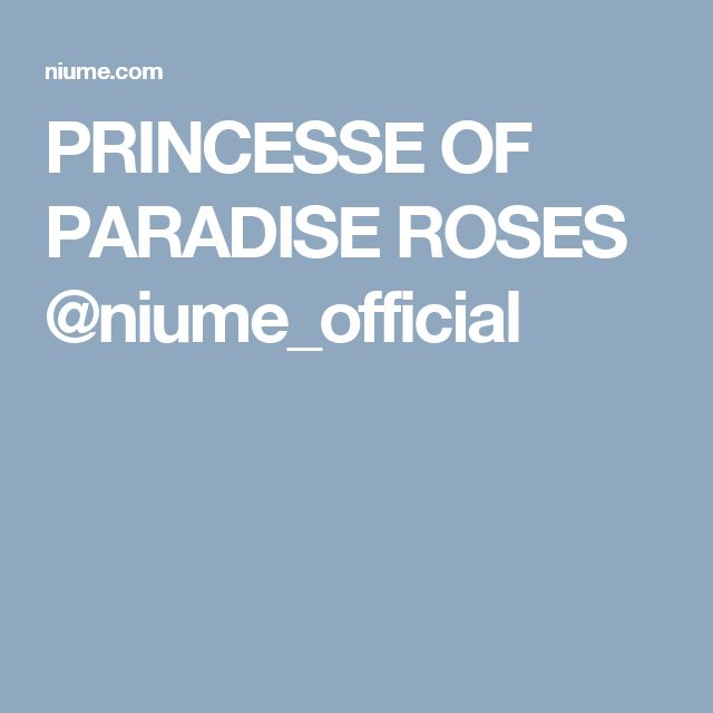 PRINCESSE OF PARADISE ROSES @niume_official