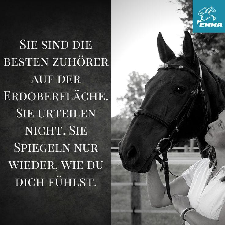 Pferdefutter & Ergänzungsfutter & Mash für Pferde. Besuche unseren neuen Shop: www.emma-care.de