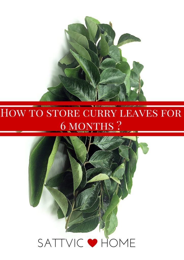 How to store curry leaves for 6 months -