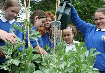 Gardening and exploring at school. Children must wash their hands properly after outside. With dirty hands touching mouth or other things can cause stomach upset or vomiting. Teachers and Teaching assistant responsibility to make sure that all children washed their hands properly after outside.