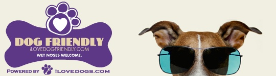 i Love Dog-Friendly – Premier Dog-Friendly Travel Guide  I love the RIO_