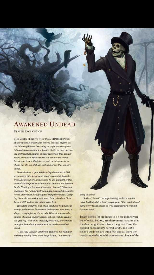 Dungeons, Dragons Homebrew, D&d Dungeons, Dragons, Dungeons