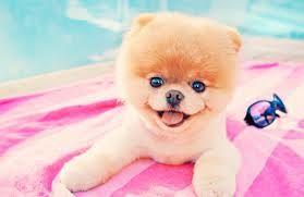 so cute :3