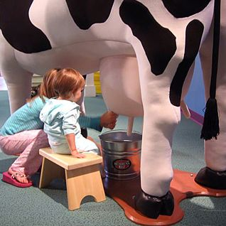 Mid-Michigan Children's Museum, milking  cow interactive: