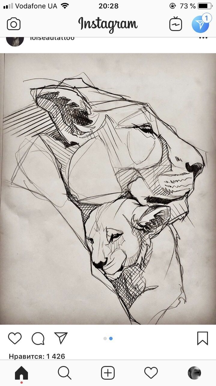 Lion's love… sketch this piece, do yourself …