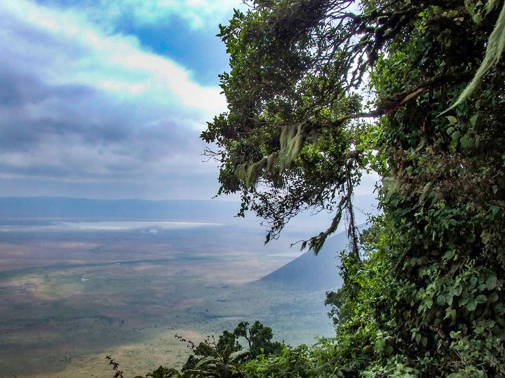 As we stand on the precipice of Ngorongoro crater largest intact caldera on earth, world heritage. 20km across, 600m highkind of makes one feel insignificant