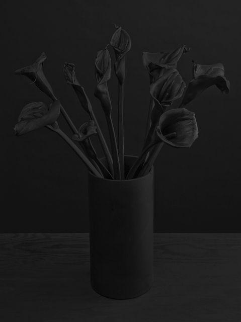 Des fleurs en noir