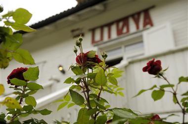 En annan värld är möjlig: Betraktelser tre år efter Utöya