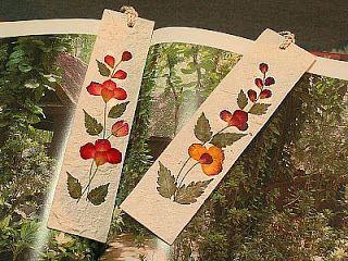 Resultado de imagen de cuadros con semillas y flores secas