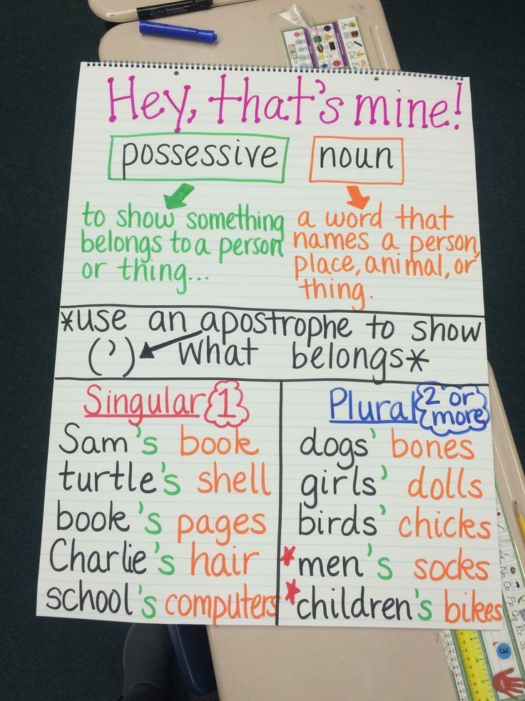 Possessive Nouns Anchor Chart. image only