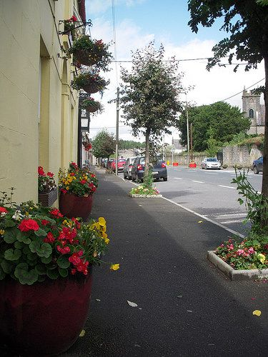Stradbally Tidy Towns