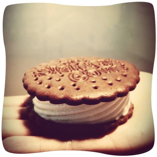 Skinny Cow Ice Cream Sandwich yummy,,.my  favorite!