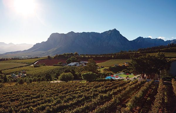A wide-angle view of Clouds Estate #Winelands #Stellenbosch #Cloudsestate http://cloudsestate.com/gallery.html