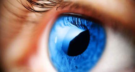 The Health Benefits of Tears: Webdesign, Web Design, Eye Colors, Colors Eye, Blue Green, Design Service, Psychics Reading, Website Design, Contact Lens