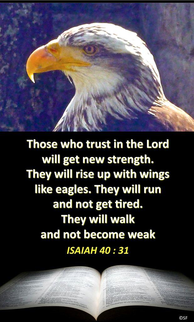 https://flic.kr/p/JtK7B6 | Isaiah 40, 31 | Ebenezer Halleluiah Creation Eagle in Coucy (Aisne, France) 5th of May, 2013
