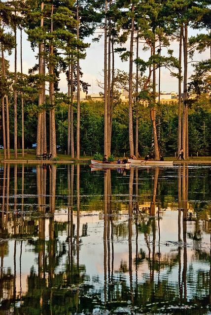 45 best jardin d 39 acclimatation bois de boulogne paris - Jardin d acclimatation bois de boulogne ...