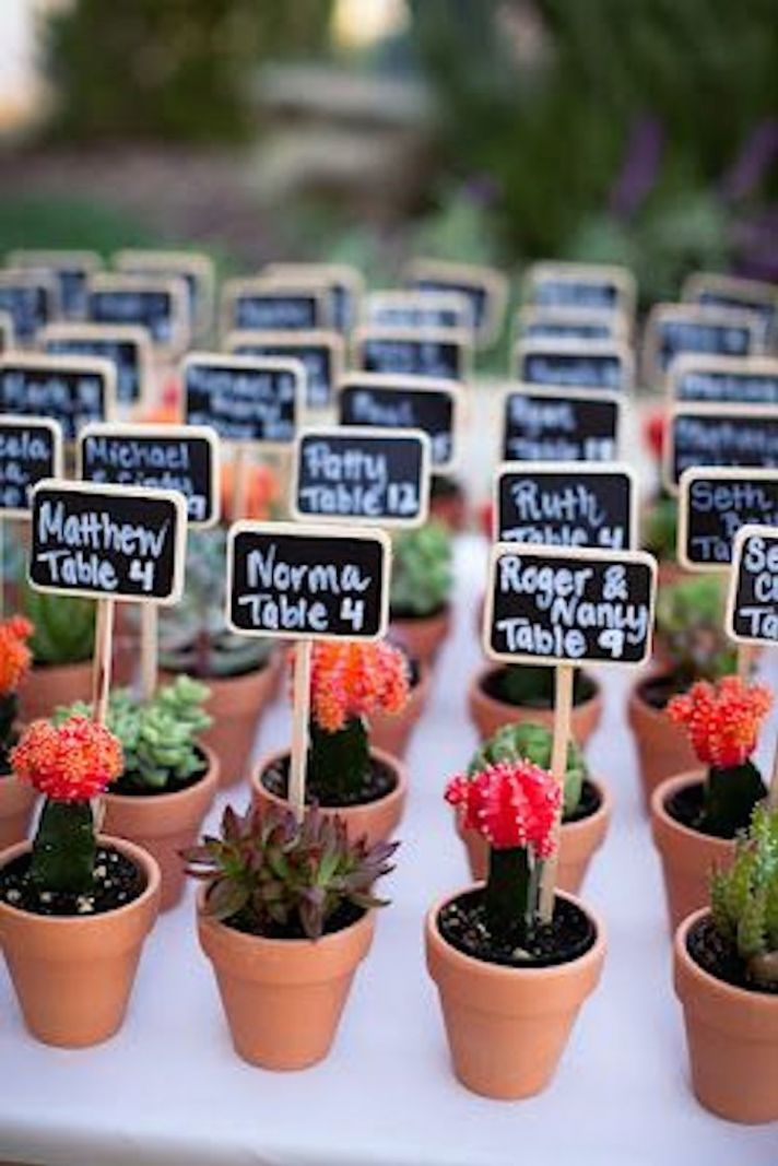 Love that these assorted succulents double as escort cards and favors!