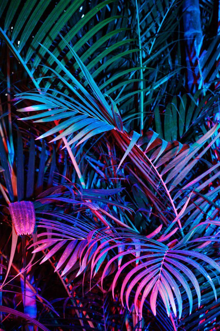 Best 25+ Neon lighting ideas on Pinterest   Neon, Neon ...