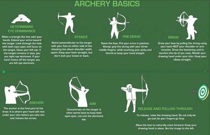Archery Basics! [INFOGRAPHIC]