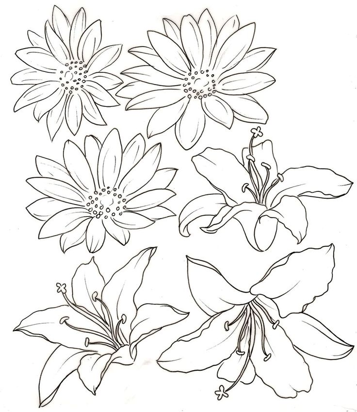 Uncolored Lily And Daisy Tattoo Designs