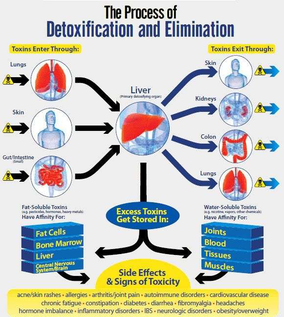 diatomaceous earth detoxification elimination of waste