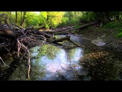 The Danube From the Black Forest to the Black Sea - YouTube