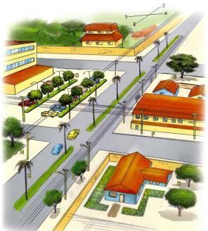 arborização - urbana - viaria - cpfl - arborização urbana viaria