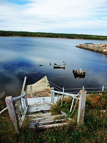 abandoned dock in Cheticamp, Nova Scotia, Canada