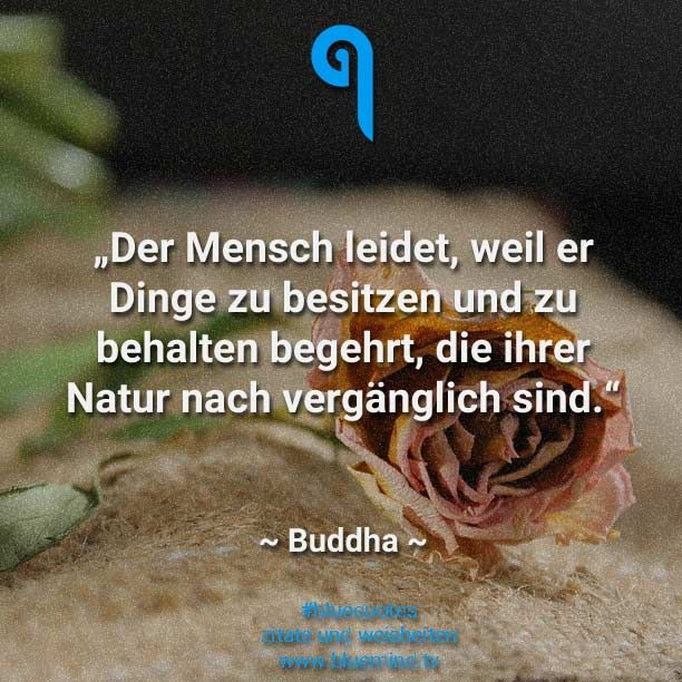Buddha Quotes: 15 times pure wisdom