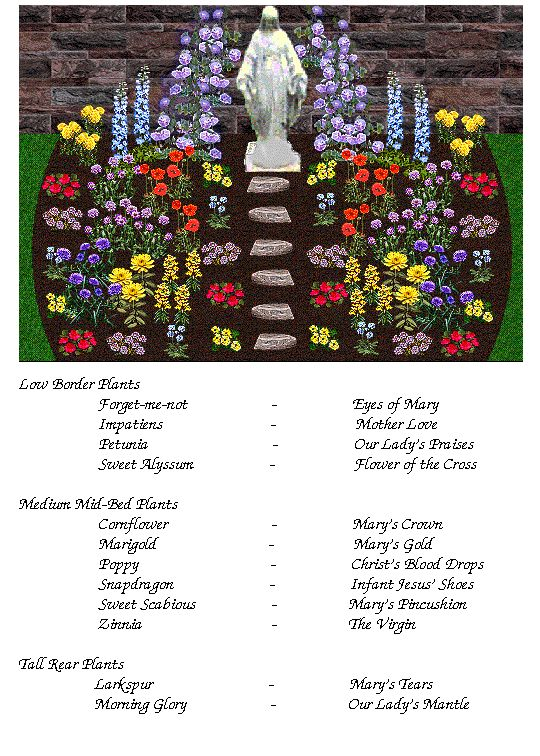 Great resource for Mary Garden flowers