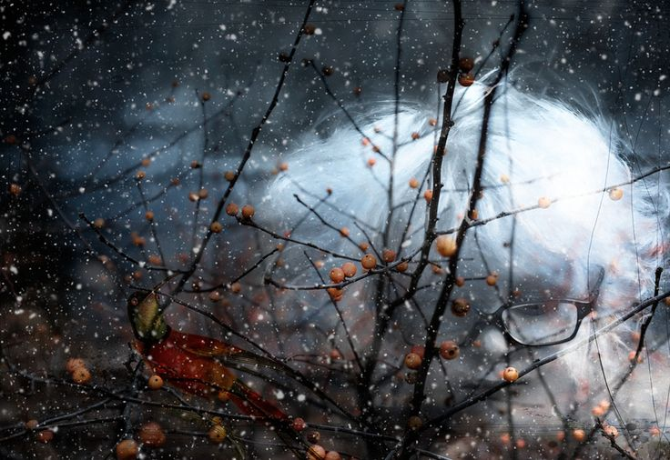 The Snow Storm: By PhotoArt By Athol