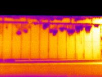 Building Envelope Thermography
