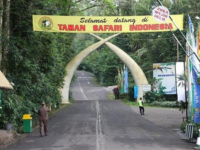 taman-safari-bogor