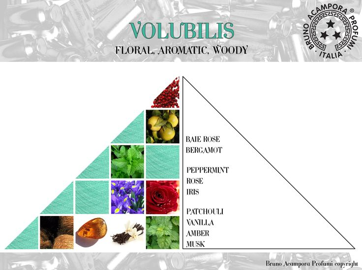 Volubilis - Pyramids #olfactorypyramid #pyramids #volubilis #piramidi #brunoacampora #brunoacamporaprofumi