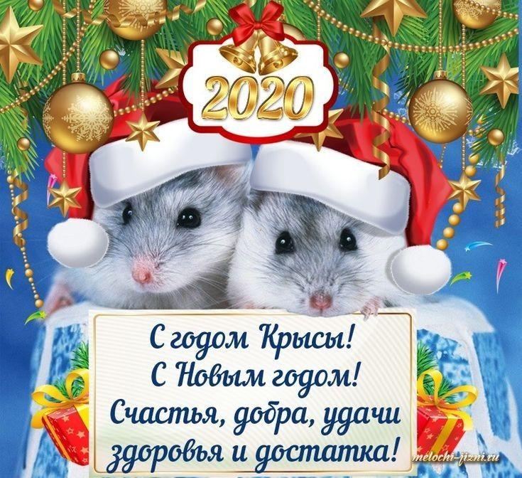 2020 God Myshki Christmas Pictures Cards Animals