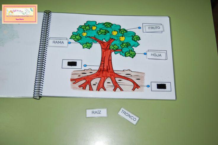"""El baúl de A.L: Libro: """"las plantas"""""""