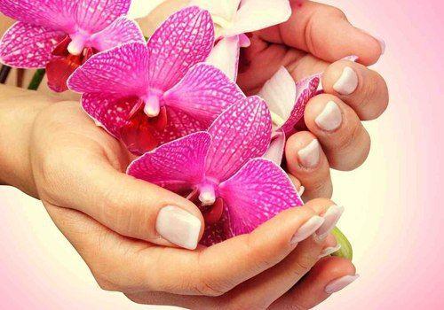 Японский маникюр, технология которого известна в Японии уже более четырехсот лет, был признан во всем мире в конце 50-х годов XX века. И по сей день он считается одним из наиболее эффективных и эстетичных. А все потому, что японский маникюр:  Подходит не только для женщин, но и мужчин, так как ставит перед собой цель, в первую очередь, оздоровить ногти, а не декорировать их. Придает ногтям блеск и здоровое сияние. Возвращает ногтям эластичность и прочность. Приводит в норму обменные…