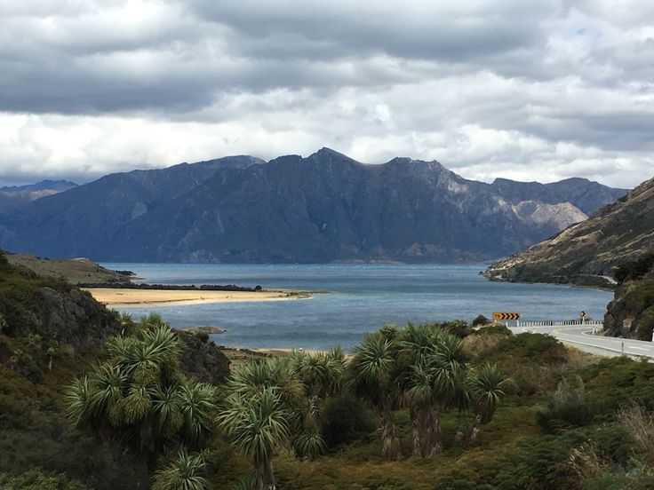 14 janvier 2017 – Jour 21 Pour la 5ème journée de suite, il continue à pleuviner sur cette partie de la Nouvelle Zélande. Le froid et le plafond nuageux toujours aussi bas limitent l'intérêt des randonnées que nous souhaitions encore faire dans la zone....