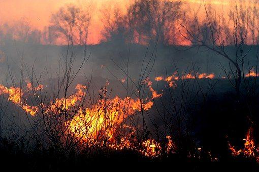 Tűz, Füst, Naplemente, Piros