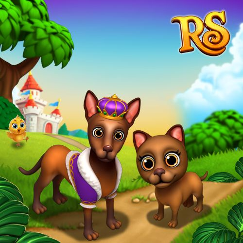 Doesn't this Pharaoh Hound look very royal? It would make a perfect pet for your Kingdom, your Highness!  #royalstorygame #royalzoo