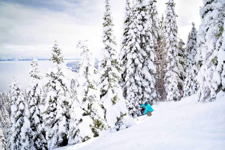 Spring has sprung in North Tahoe and the 12 ski resorts in the area have announced extended season dates for 2016-17 and spring deals. Learn more now.