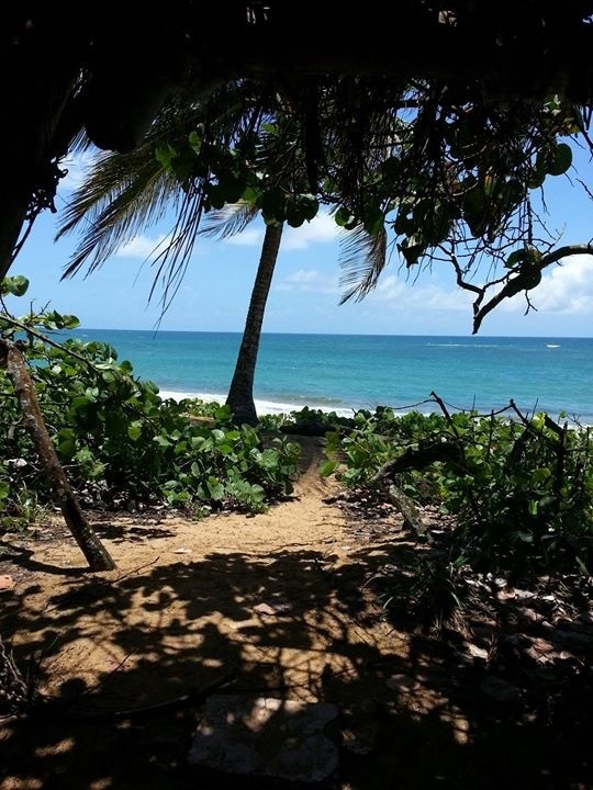 28 best puerto rico villalba images on pinterest puerto